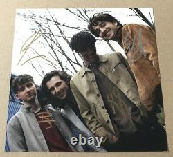 Inhaler It Won't Always Be Like This Zoetrope Vinyl 848/1000 Signed Picture
